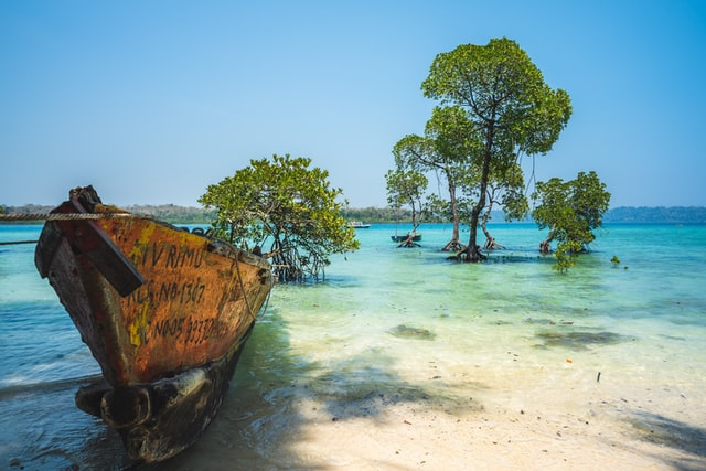 Andaman in a Jiffy