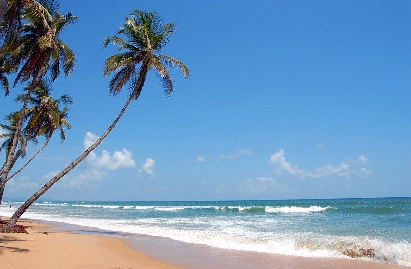 Goa 365days
