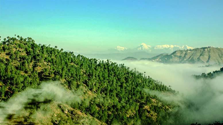 Hills of Kumaon